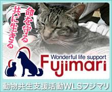 動物共生支援活動 WLSフジマリ